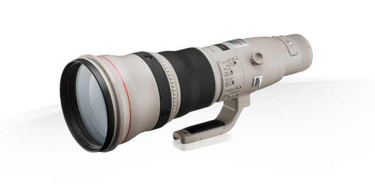 EF 800mm f/5.6L IS USM